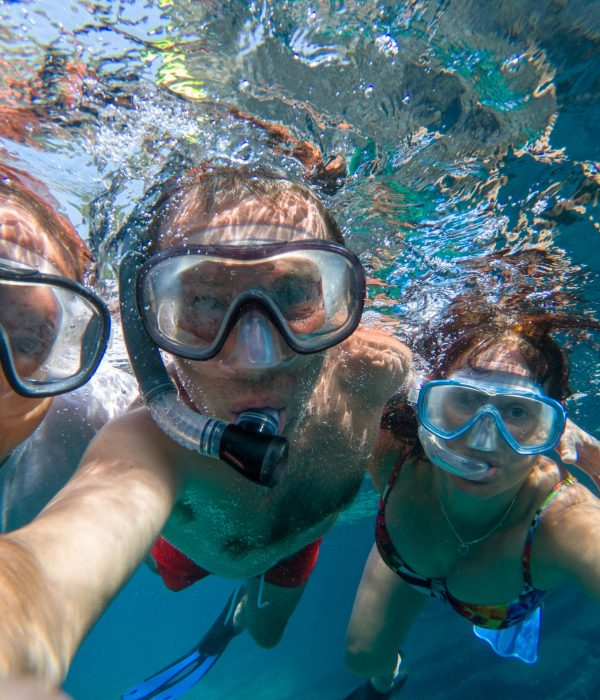 Home and Land Packages - Underwater view of snorkeling friends